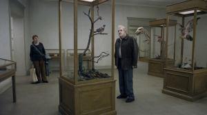 Un-piccione-seduto-su-un-ramo-riflette-sullesistenza