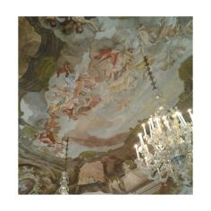 Aula magna Ca' Dolfin, di Rossana Salaro