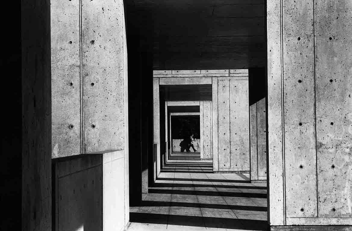 architecture-starck-institute
