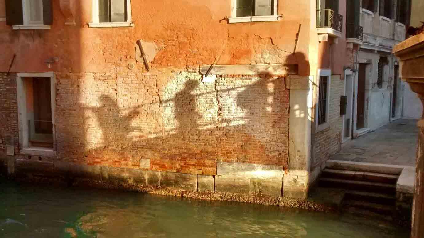 venezia-palombo
