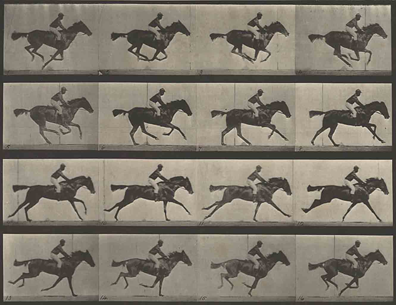 muybridge-horse-in-motion