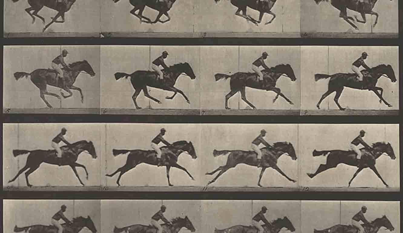 muybridge-horse-in-motion