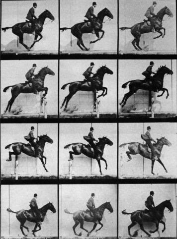 muybridge-horse-jumping