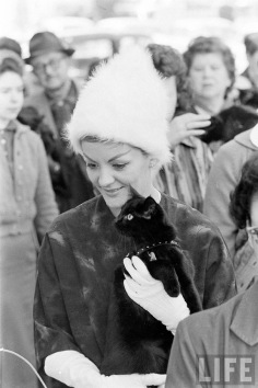 black-cat-auditions-hollywood-1961-5